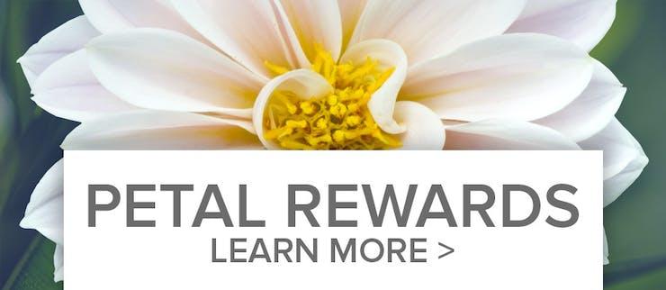 Petal Point Reward Program