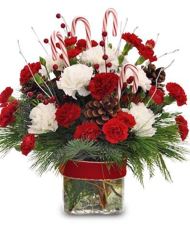Christmas Flowers From Jersey By Post Tqff Kamakovn Biz