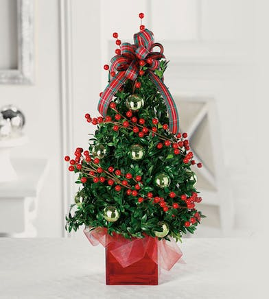 Holiday Boxwood Tree Centerpieces