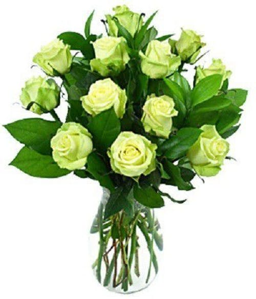 Dozen Light Green Roses