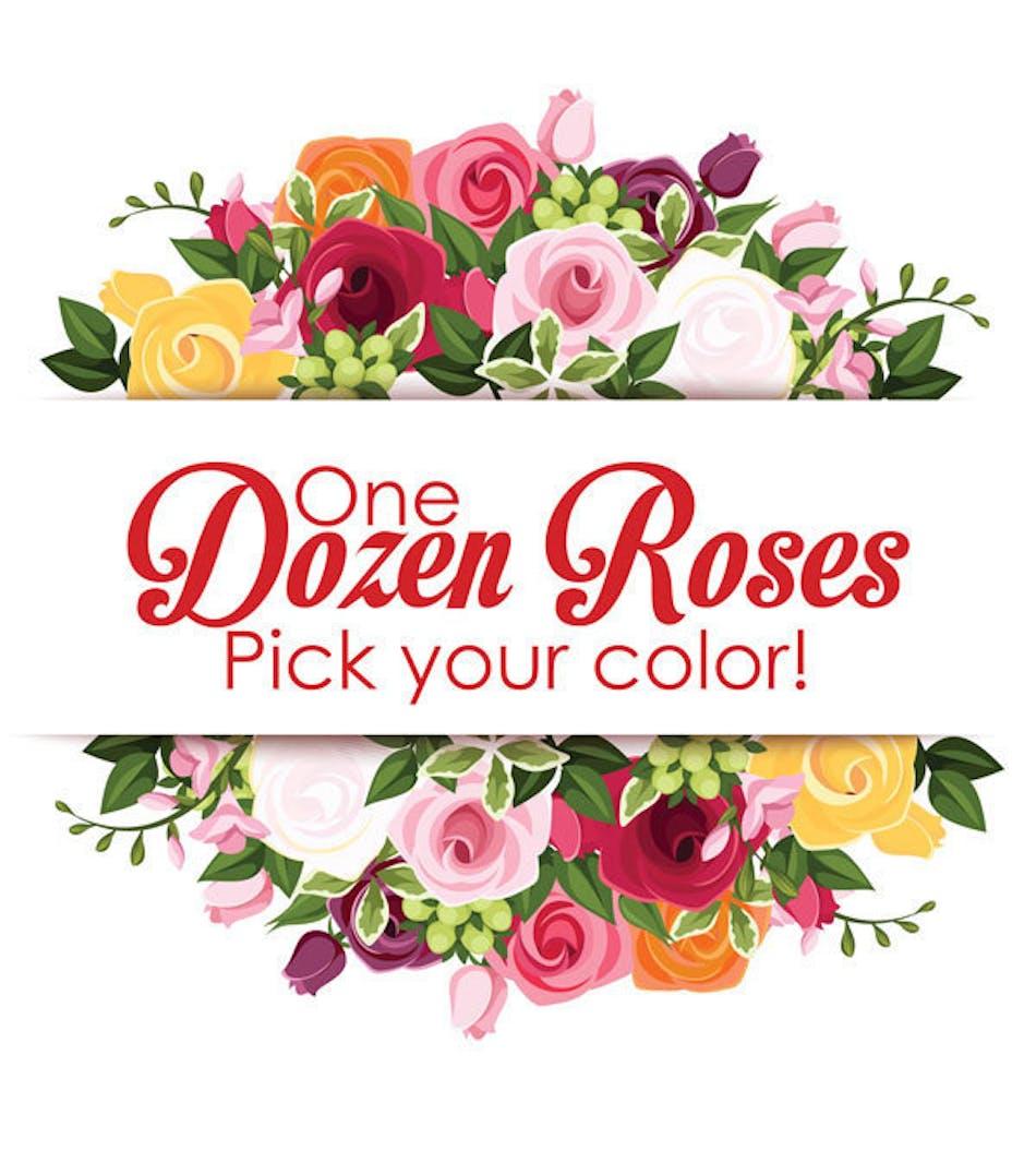 Dozen Premium Roses : Choose Your Favorite Color