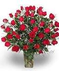 Four Dozen Roses