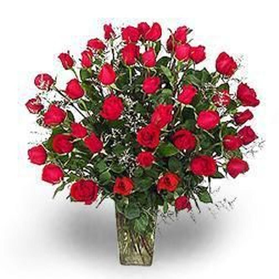 four dozen red roses in albuquerque nm peoples flowers