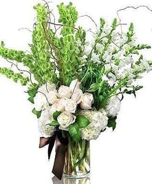 A beautiful white and green design.