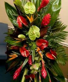 Fresh Beautiful Exotic Flowers