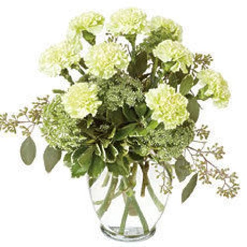 St. Patrick's Carnations