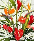 Tropical Bouquet Designer's Choice