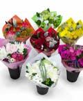 Bulk Petite Bouquets