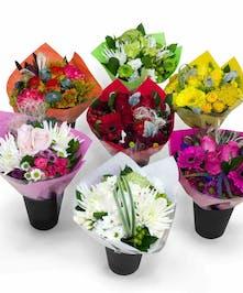 18 Assortment of Bulk Petite Bouquets
