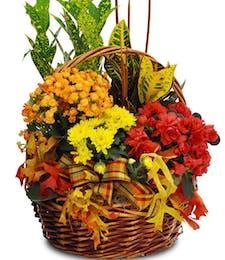 Fall European Garden Basket