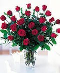 Two Dozen Roses without Accent Flower