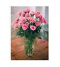 Spray Roses with fewer flowers