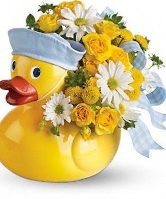 Ducky Delight- Boy
