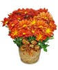 Fall Mum Plant with Ribbon Treatment