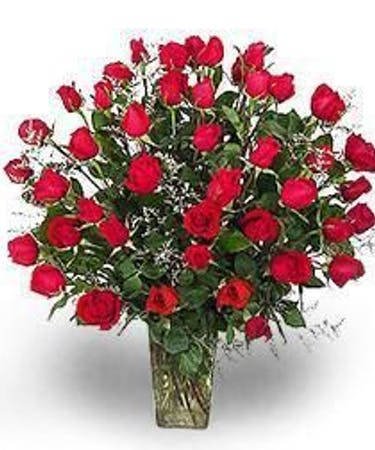 Four Dozen Red Roses In Albuquerque Nm Peoples Flowers