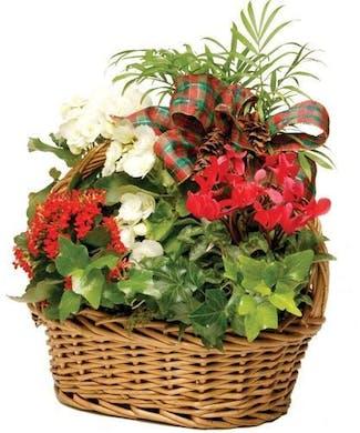 Holiday European Garden Basket