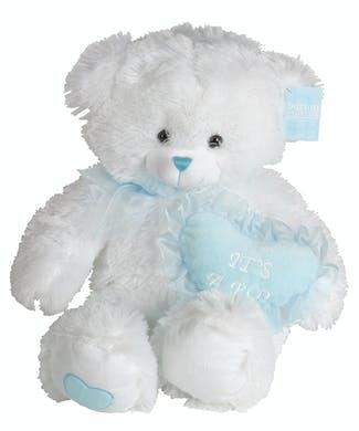 New Baby Boy Bear