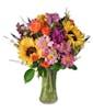 Premium Upgrade in Larger Vase (Most Popular)