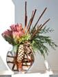 Proteas & Pinecones