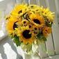 Summer Sunflowers As Shown