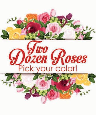 Two Dozen Premium Long Stemmed Roses
