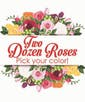 Upgrade to Two Dozen Roses with Accent Flower - Pick Your Color!
