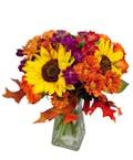 Fall Splendor with Fewer Flowers