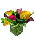 October Design of the Month Calla Lillies  (Assorted Fall Colors )