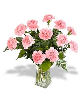 A Dozen Carnations
